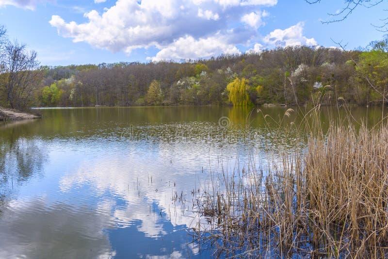 Beau lac fin, beau, joli, attrayant de forêt parmi les montagnes du Caucase du nord photo stock