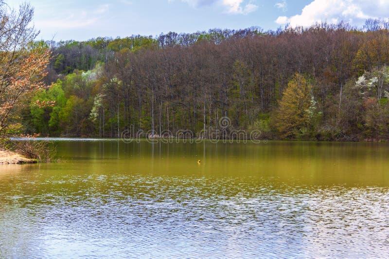Beau lac fin, beau, joli, attrayant de for?t parmi les montagnes du Caucase du nord photographie stock