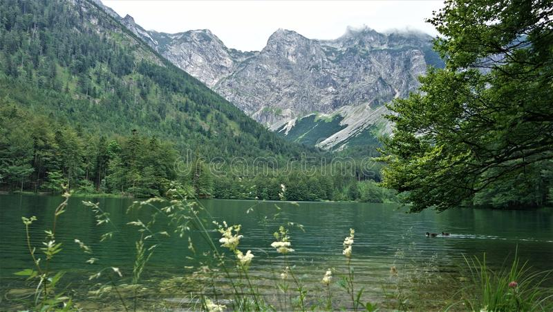 Beau lac Hiterer Langbathsee en Autriche en été photographie stock