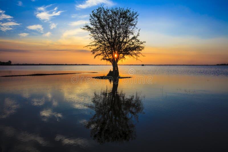 Beau lac le soir photographie stock
