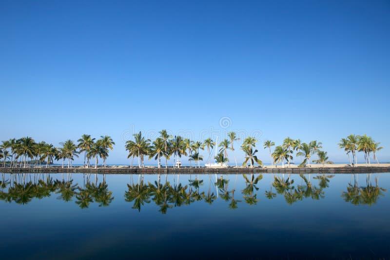 Beau laguna avec des palmiers, ciel bleu photographie stock