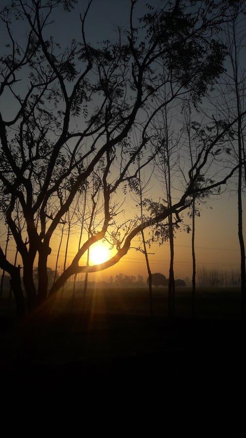 Beau lever de soleil images libres de droits