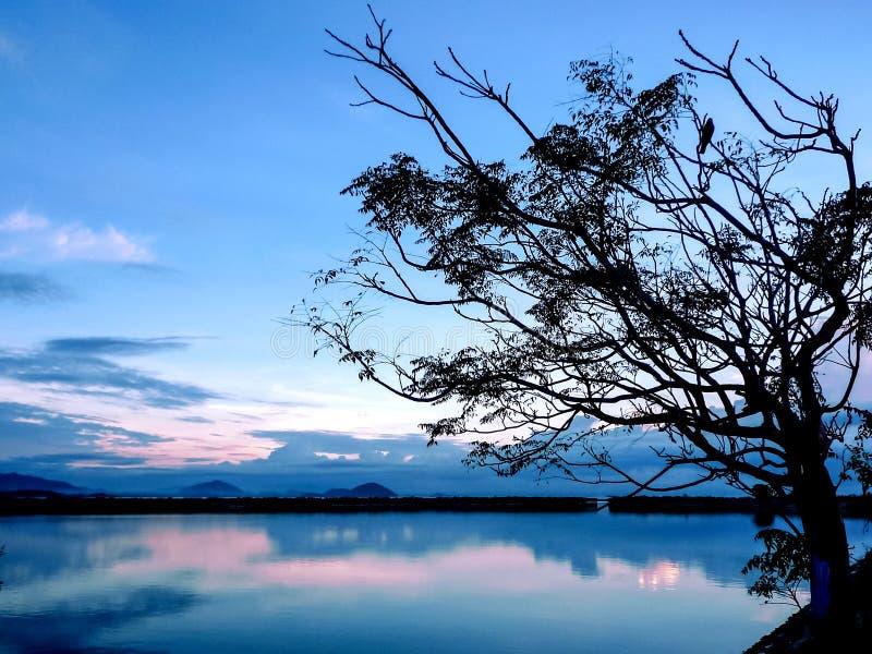 Beau lever de soleil au lac Chilika, Inde photos stock