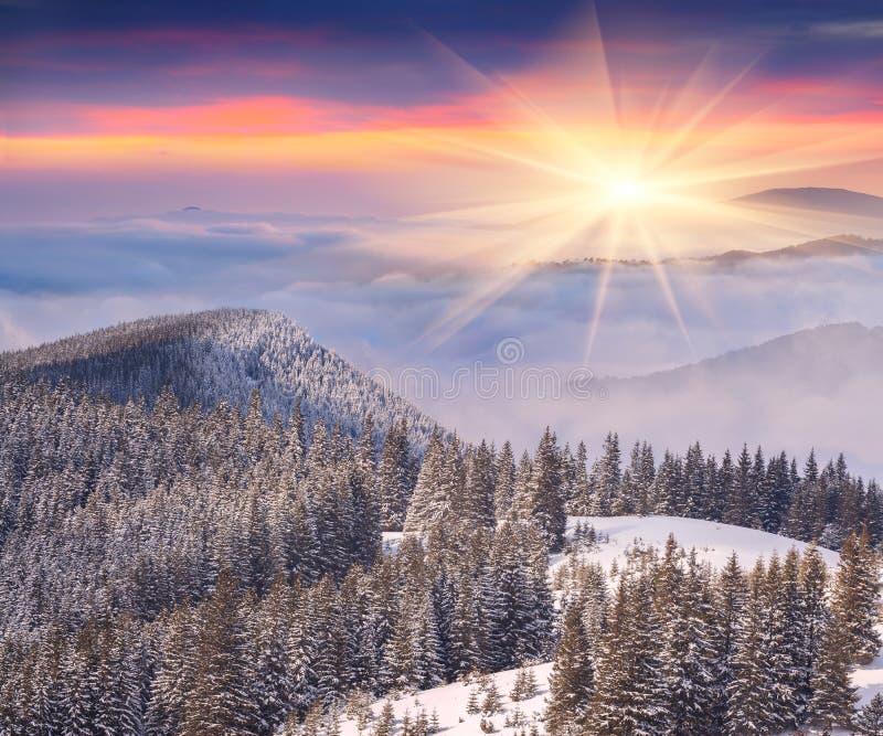 Beau lever de soleil d'hiver en montagnes photos libres de droits