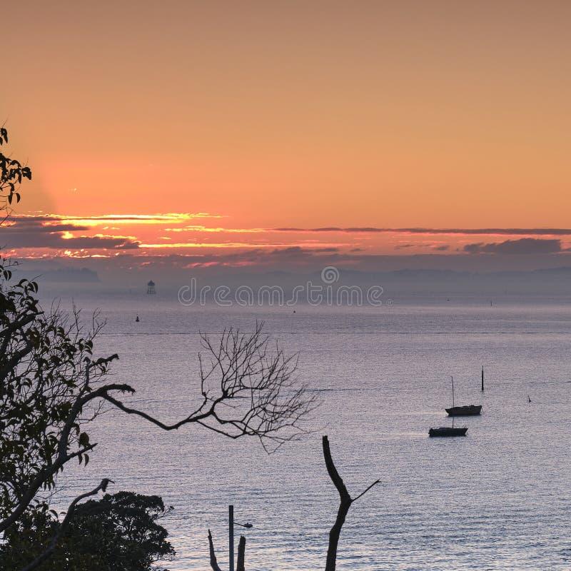 Beau lever de soleil magnifique dans un club de yacht royal d'Akarana de marina à Auckland images stock