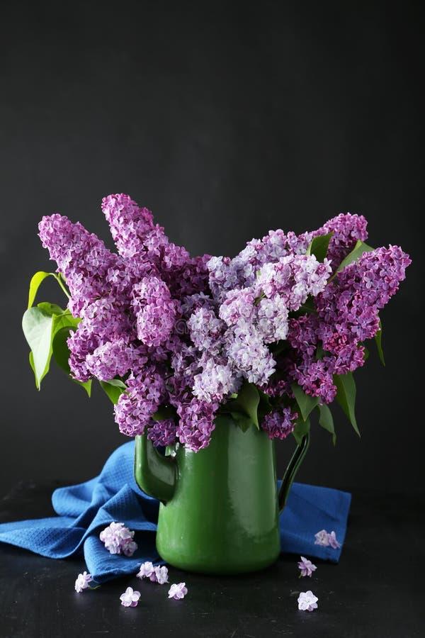 Beau lilas photos stock