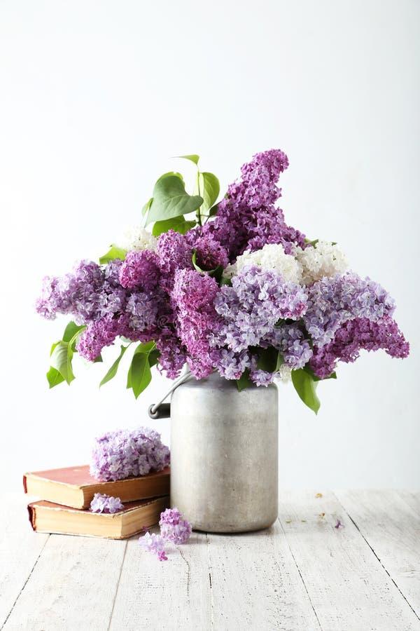 Beau lilas dans la boîte d'arrosage photographie stock