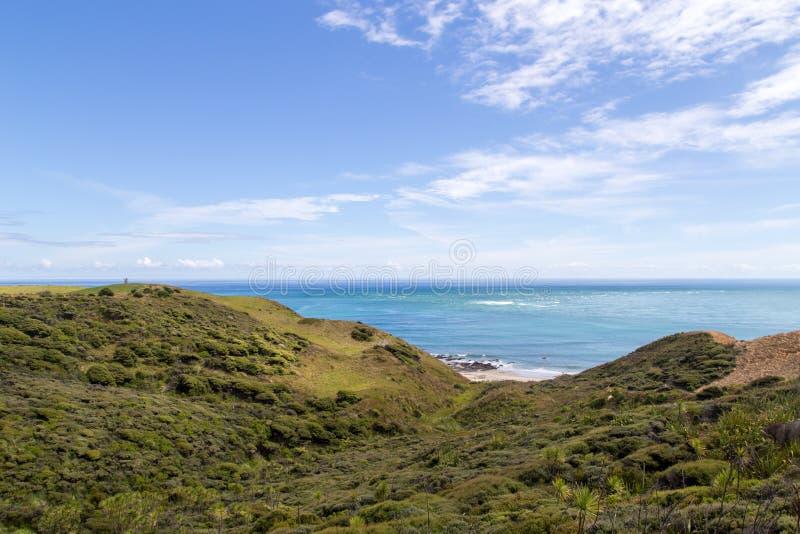 Beau littoral chez Omapere, Nouvelle-Zélande photo stock