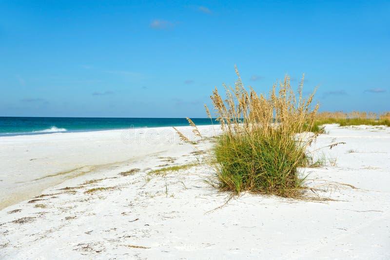 Beau littoral de la Floride image stock