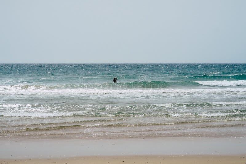 Beau littoral espagnol : Silhouette de femme se baignant, plage, mer, vagues avec la crête blanche image libre de droits
