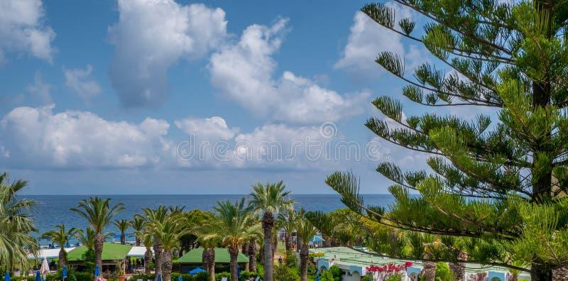 Beau littoral tropical avec de l'eau les palmiers et bleu clair photos stock