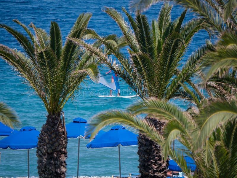 Beau littoral tropical avec de l'eau les palmiers et bleu clair images stock