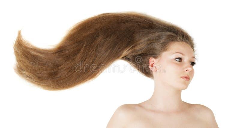 Beau long cheveu sain images libres de droits