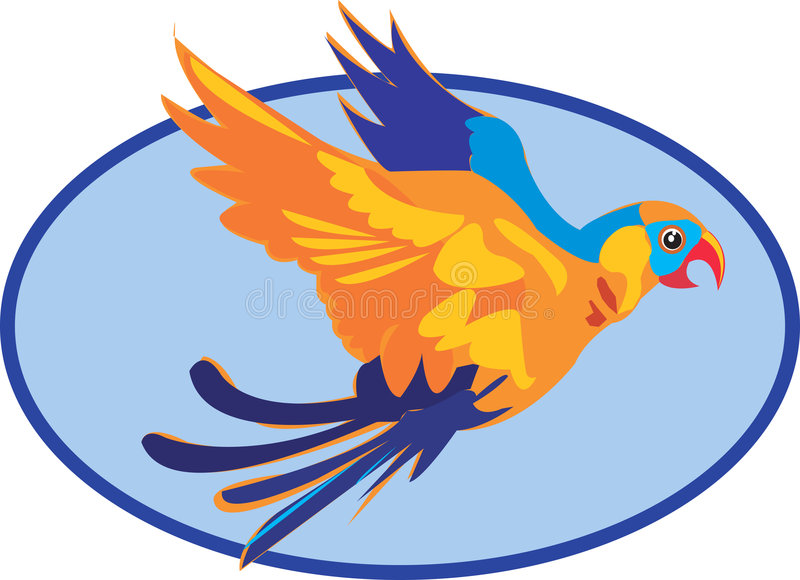 Beau Macaw illustration libre de droits