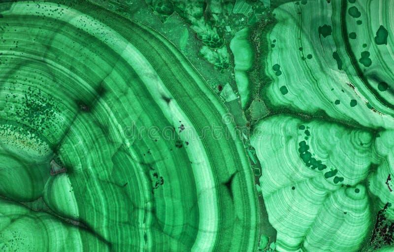 Beau macro foncé de texture de malachite verte photo libre de droits