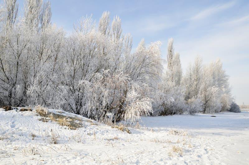 Beau matin de l'hiver sur le fleuve images libres de droits