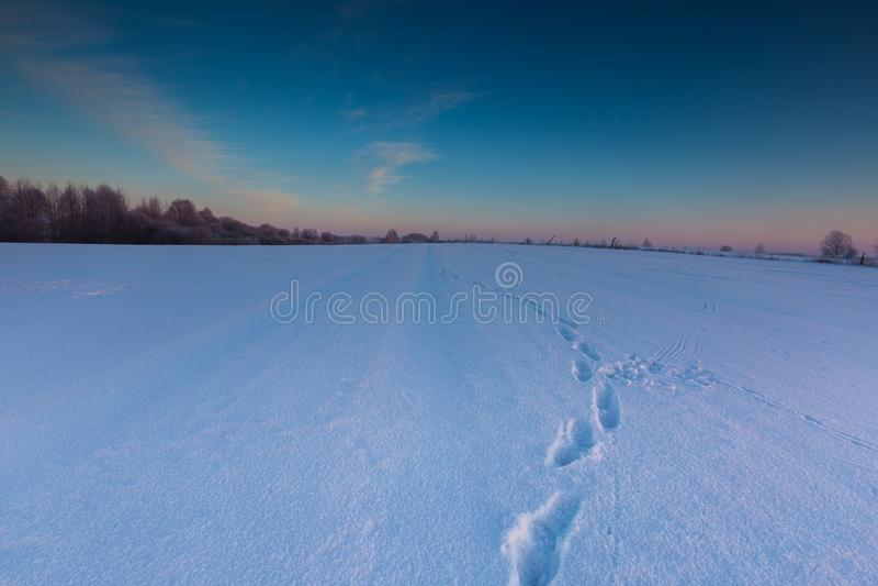 Beau matin froid sur la campagne neigeuse d'hiver images stock