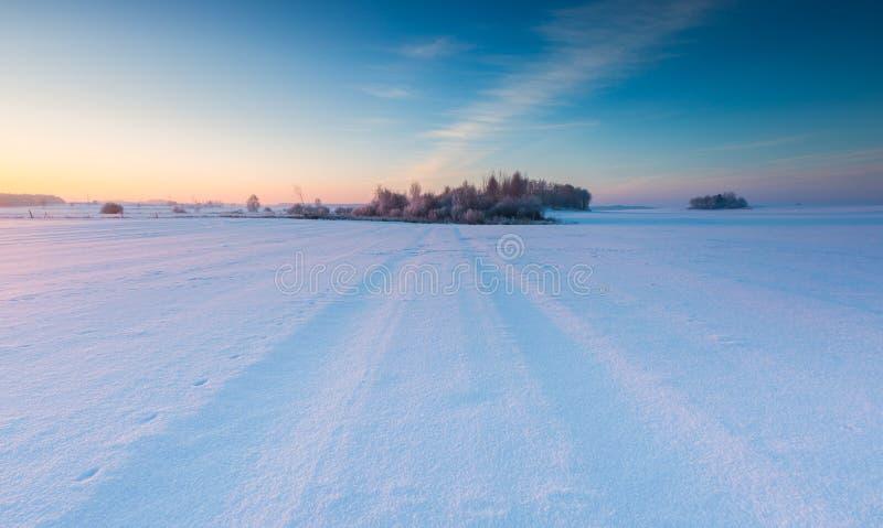 Beau matin froid sur la campagne neigeuse d'hiver photographie stock libre de droits