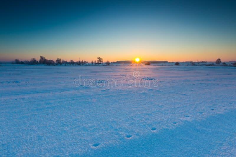 Beau matin froid sur la campagne neigeuse d'hiver photographie stock