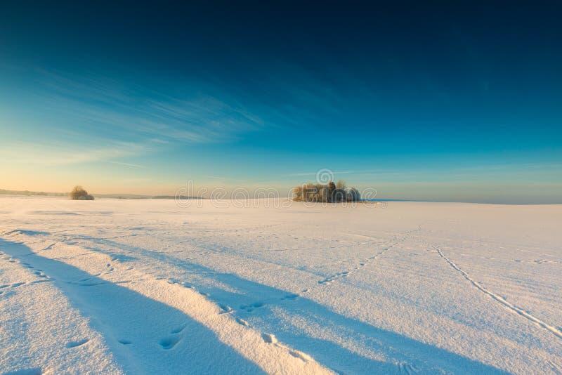 Beau matin froid sur la campagne neigeuse d'hiver photo stock