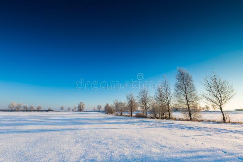 Beau matin froid sur la campagne neigeuse d'hiver image libre de droits