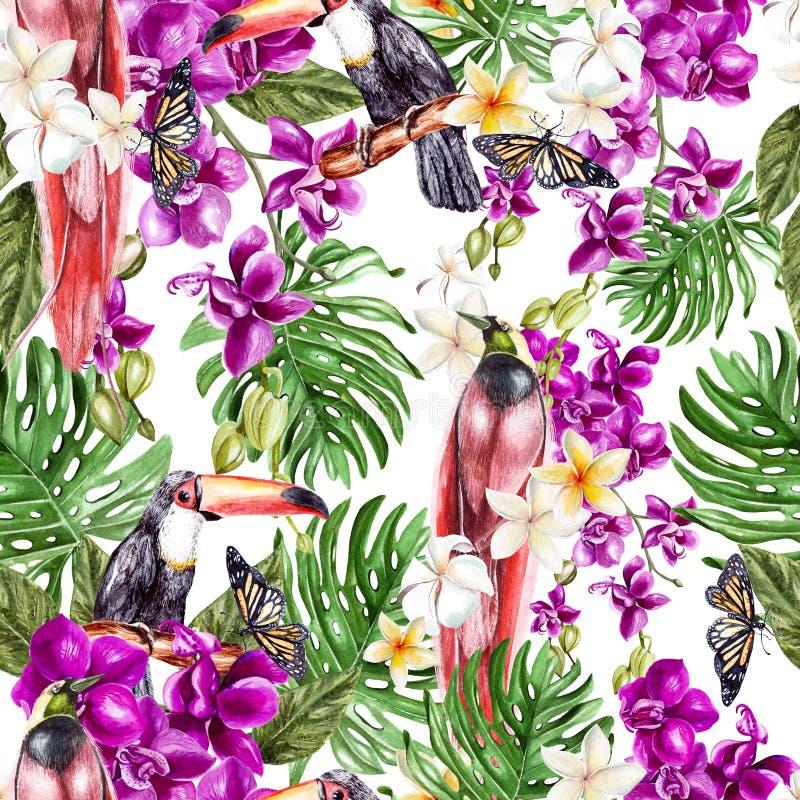 Beau modèle d'aquarelle avec des fleurs d'orchidée, des feuilles tropicales et des oiseaux illustration stock