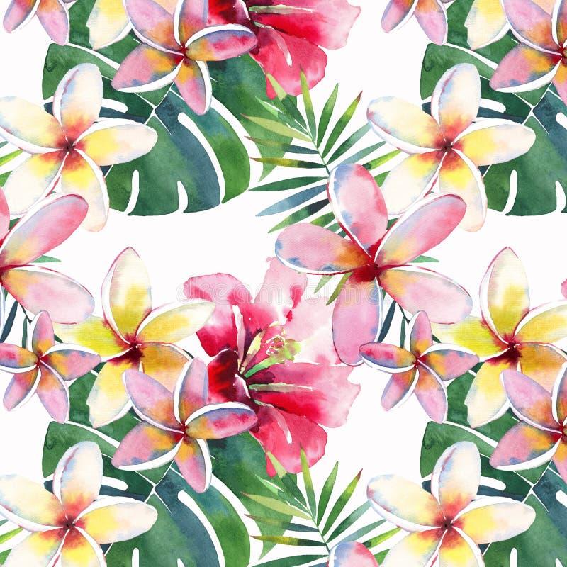 Beau beau modèle multicolore mignon tropical de fines herbes floral vert lumineux d'été d'Hawaï de fleurs jaunes tropicales sur u illustration stock