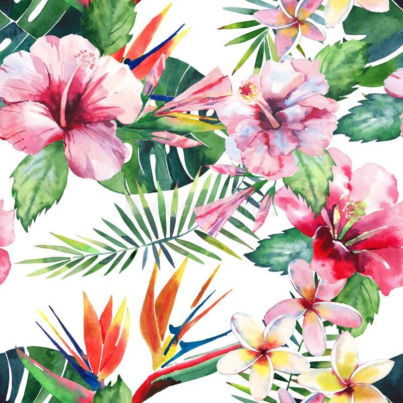 Beau beau modèle multicolore mignon tropical de fines herbes floral vert lumineux d'été d'Hawaï de fleurs jaunes tropicales sur u illustration libre de droits