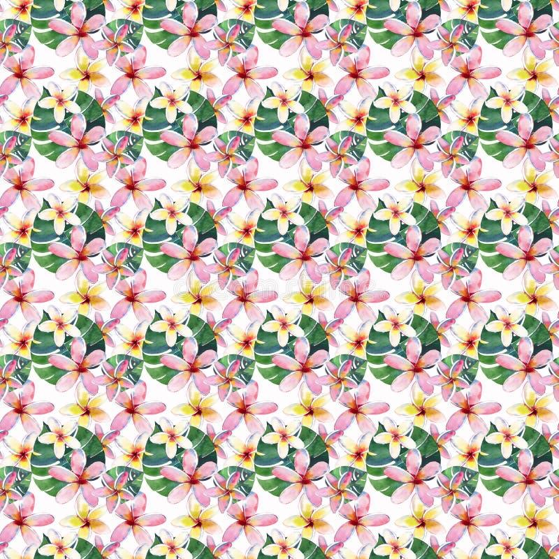 Beau beau modèle multicolore mignon tropical de fines herbes floral vert lumineux d'été d'Hawaï de fleurs tropicales illustration de vecteur