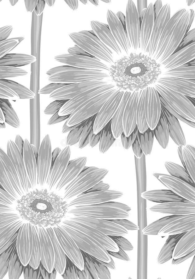 Beau monochrome, fond sans couture noir et blanc avec la fleur de gerbera de tige illustration stock