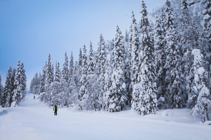 Beau Mountain View froid de la station de sports d'hiver, jour d'hiver ensoleillé avec la pente photographie stock libre de droits