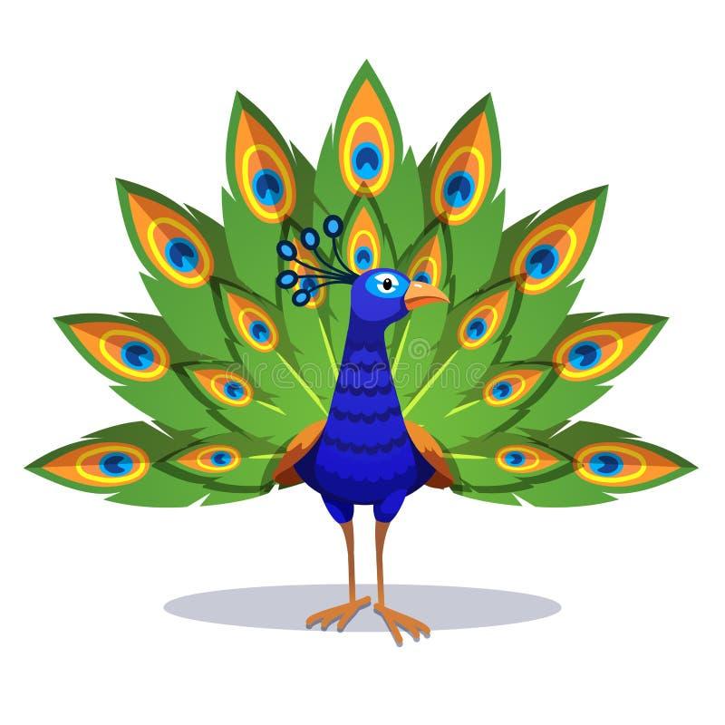 Beau paon se tenant avec les plumes vertes  illustration de vecteur