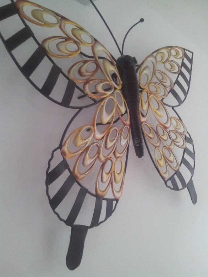 Beau papillon photographie stock libre de droits