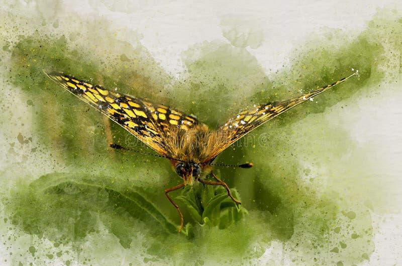 Beau papillon peint par aquarelle illustration stock