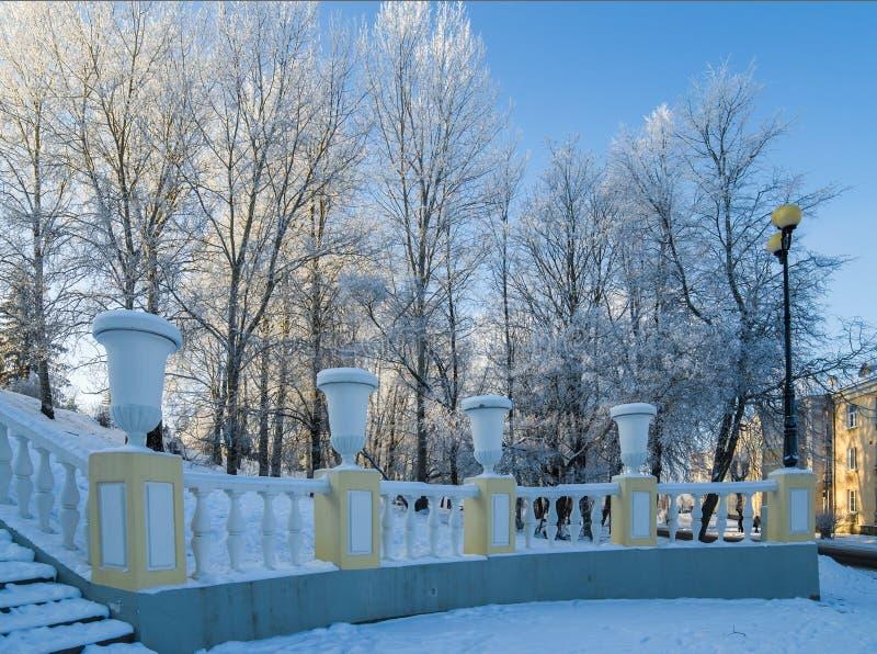 beau parc de ville avec des arbres couverts de gelée photos stock