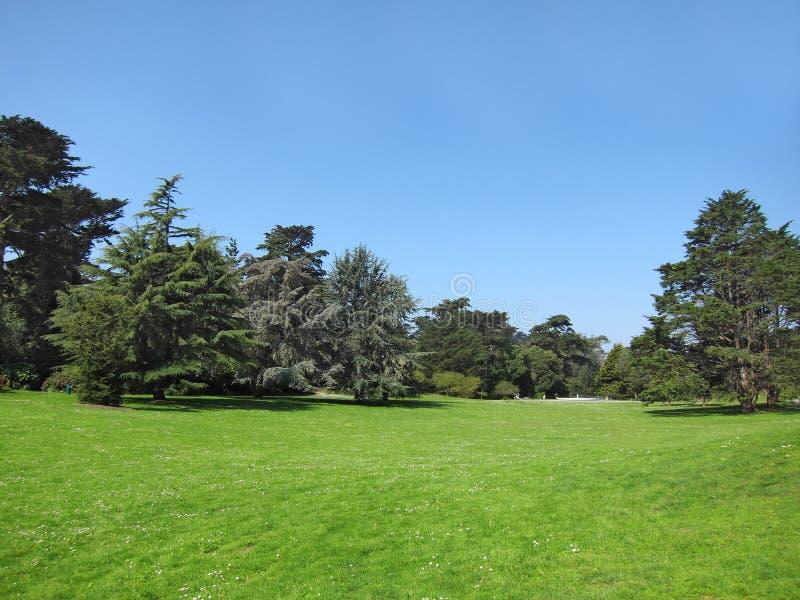Beau parc vert et ciel bleu images stock