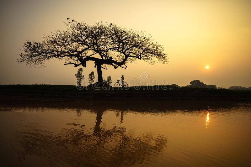 Beau paysage avec la silhouette d'arbres et réflexion au coucher du soleil avec la femme vietnamienne portant la position traditi photos libres de droits
