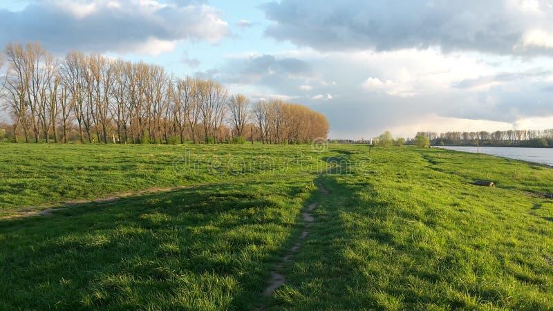 Beau paysage chez Rhein image libre de droits