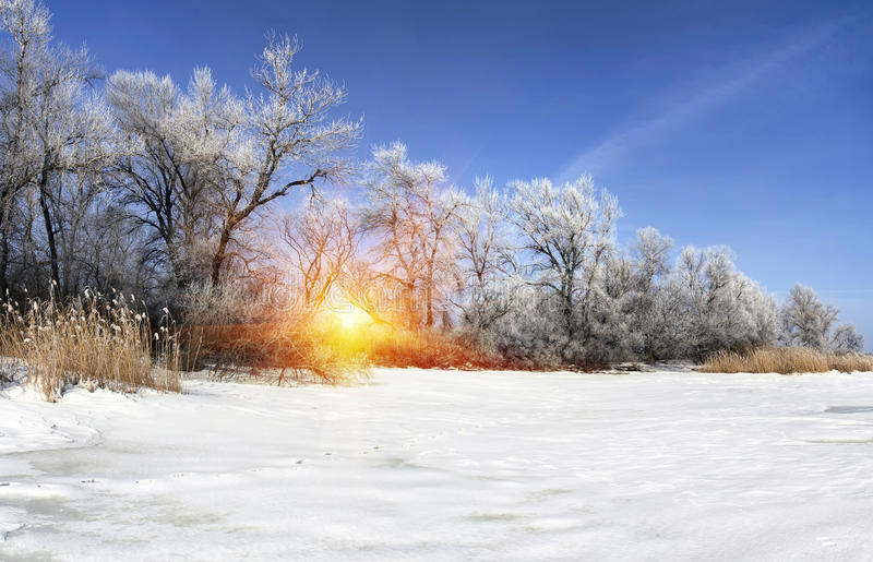 soleil en hiver