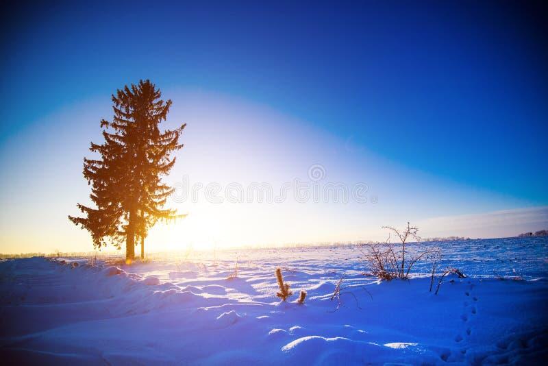 Beau paysage d'hiver photos libres de droits