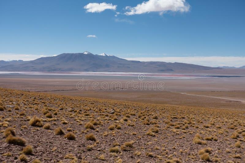Beau paysage d'un lagune dans l'altiplano en Bolivie image stock