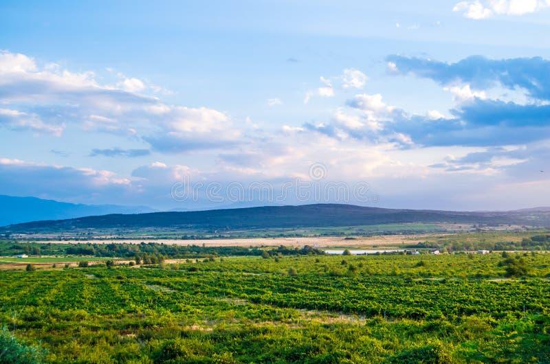 Beau paysage d'une montagne et d'un champ vert, ciel bleu avec les nuages blancs photo libre de droits