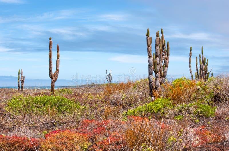 Beau paysage de Galapagos images stock