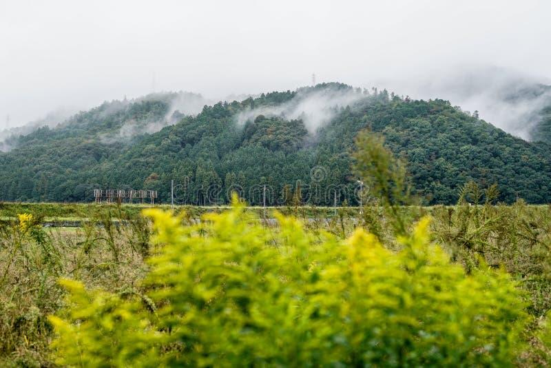 Beau paysage de haute montagne japonaise dans l'esprit de matin photographie stock libre de droits