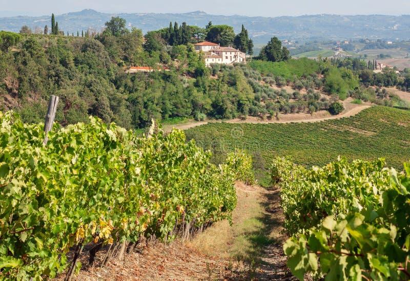 Beau paysage de la Toscane avec des maisons de village au-dessus de vignoble Pré vert, vignes de campagne en Italie image libre de droits