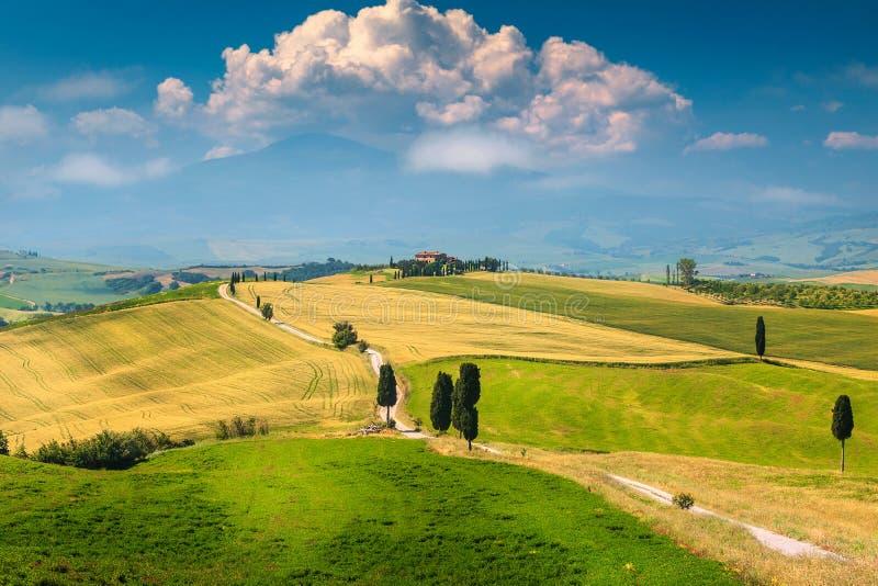 Beau paysage de la Toscane avec la route et le cyprès incurvés, Italie, l'Europe photo libre de droits