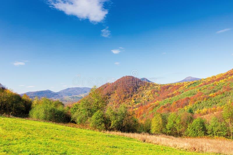 Beau paysage de montagne en automne photo stock