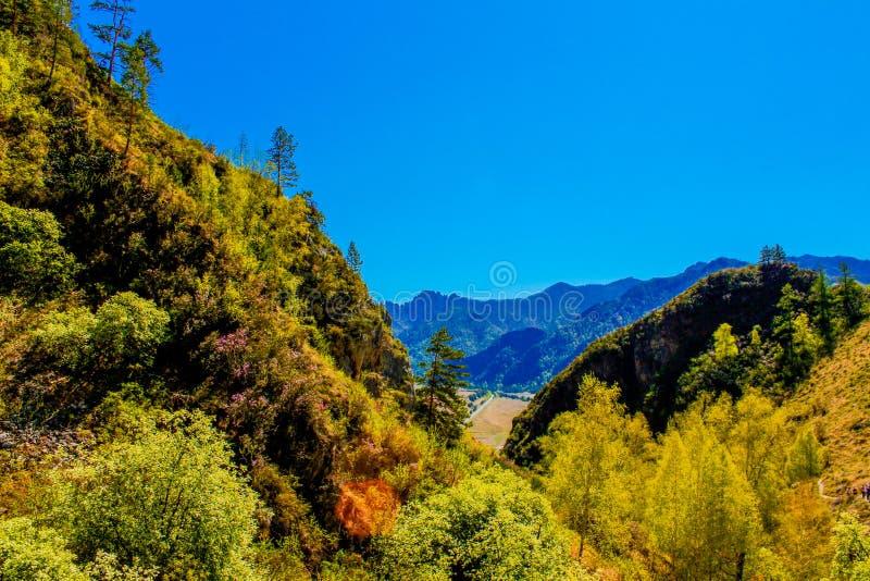 Beau paysage de nature, augmentant l'activité La forêt majestueuse de montagne en nuages aménagent en parc Vue verte de gamme de  image stock