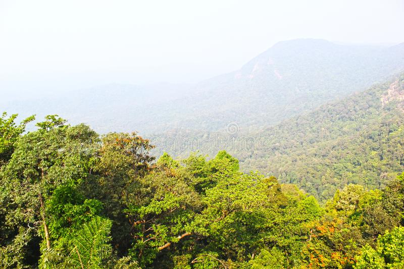 Beau paysage de nature avec la montagne, le brouillard, le ciel et les arbres image libre de droits