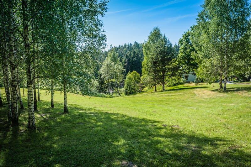 Beau paysage de nature avec les pelouses vertes photos stock